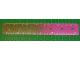 Part No: 48176pb01  Name: Clikits Ruler, 6 inch / 16 cm, 7 holes, color graduating to Trans-Dark Pink