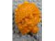 Part No: gal50  Name: Galidor Head Aquart