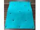 Part No: bb0952  Name: Foam Scala Tarpaulin with 13 Holes #3148