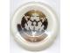 Part No: 32533pb361  Name: Bionicle Disk, 361 Po-Metru Pattern