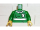 Part No: 973pb0163c01  Name: Torso Harry Potter Quidditch Slytherin Pattern / Green Arms / Yellow Hands