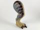 Part No: 98062c01pb08  Name: Dino Leg Large (Rear) Tyrannosaurus rex with Pin, Dark Brown Claws and Dark Brown Stripes on Dark Bluish Gray Pattern - Right