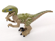 Part No: Raptor06  Name: Dinosaur, Raptor / Velociraptor with Olive Green Back and Tan Markings (Jurassic World Delta)