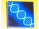 Part No: 3068bpb0020  Name: Tile 2 x 2 with Groove with DNA Double-Helix Pattern