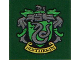 Part No: 3068bpb1258  Name: Tile 2 x 2 with Groove with 'SLYTHERIN' House Crest Pattern