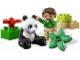 Set No: 6173  Name: Panda