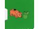 Set No: 7952  Name: Advent Calendar 2010, Kingdoms (Day 12) - Pig with Apple