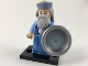 Set No: colhp  Name: Albus Dumbledore, Harry Potter & Fantastic Beasts (Complete Set with Stand and Accessories)