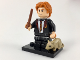 Set No: colhp  Name: Ron Weasley in School Robes, Harry Potter & Fantastic Beasts (Complete Set with Stand and Accessories)