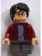 Minifig No: hp143  Name: Harry Potter, Dark Red Plaid Flannel Shirt, Dark Bluish Gray Short Legs