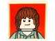 Lot ID: 185502764  Part No: 11203pb004  Name: Tile, Modified 2 x 2 Inverted with Brown Haired Hobbit on Red Background Pattern