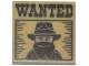 Part No: 3068bpb0901  Name: Tile 2 x 2 with Groove with 'WANTED' Western Bandit Poster Pattern