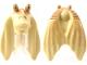 Part No: 92743pb01  Name: Minifigure, Head, Modified SW Gungan Flat Eyes with Nougat Top Pattern