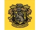 Part No: 3068bpb1260  Name: Tile 2 x 2 with Groove with 'HUFFLEPUFF' House Crest Pattern