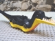 Part No: DAbody1  Name: Dino Body Pteranodon / Raptor with Black Top and Complementary Bottom Pattern