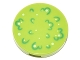 Part No: 14769pb093  Name: Tile, Round 2 x 2 with Bottom Stud Holder with Green Foliage and White Spots Pattern